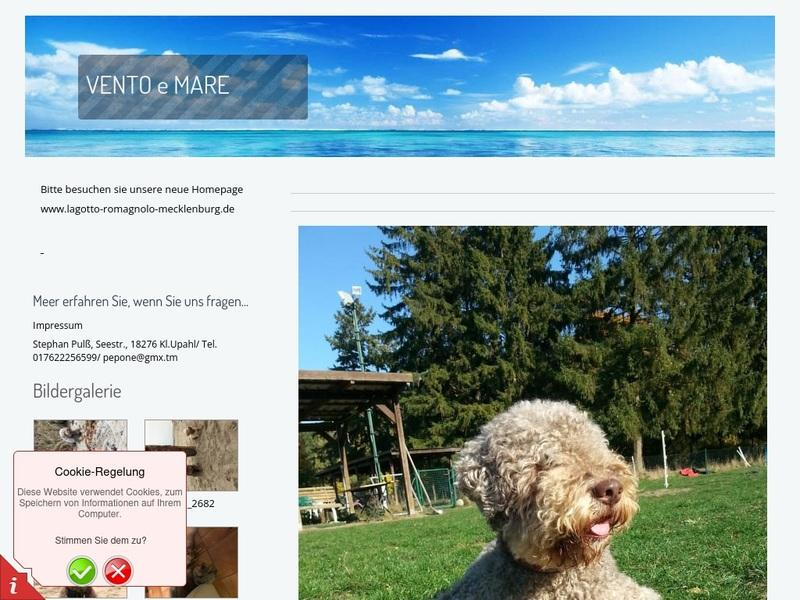 Screenshot von www.lagotto-mv.dog